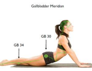 gallbladdermeridian