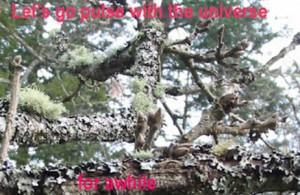 universepulse300