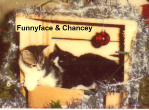 funnyfacenchancey-300x222